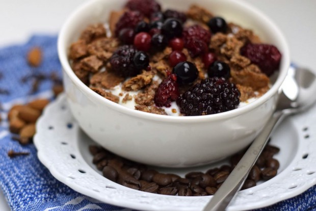 Low Carb Gewürz Müsli ohne Zucker Glutenfrei Frühstück ohne Kohlenhydrate