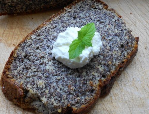 Blog der Woche – Low Carb Gerichte