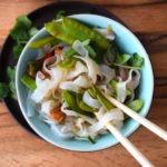 Asiatische Shirataki Nudeln mit Slendier low carb vegetarisch
